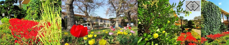 鉾田市立上島西小学校