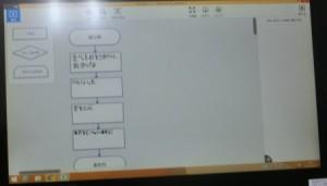 CIMG9499 (2)